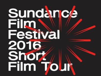 03. & 17. & 29. September: KurzFilm: Shorts Attack im September