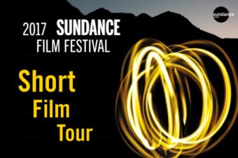 05./ 12./ 17./ 26.  August // KurzFilm:  Shorts Attack